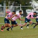 Waratahs 100 p.c dedicated as NSW Rugby reveals staffing cuts – NEWPAPER24